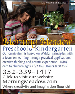 morning meadow preschool and kindergarten